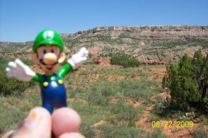 Luigi in the canyon 1 by leonathegriffin