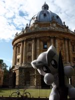 Fella goes to Oxford Uni by Morgan-the-Rabbit