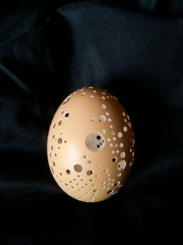 Hand Carved Chicken Egg Art by ShadowOfDay