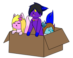 Sisters in a Box by DethSnBGaming