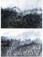 Watercolour forest by Finnguala
