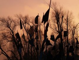 Black Flags by andresto
