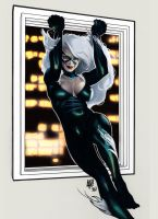 black cat by visceralNL