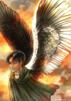 Wings of Freedom by Haychel