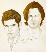 Supernatural_sketch by Pulvis