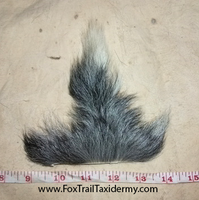 Real Goat Tail by EternalEmporium