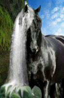 Waterfall by illus0ry