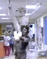 Jellicle Cats in the hospital by Kimberly-AJ-04-02