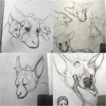 Trico sketches by MaylaDR93