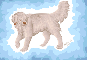 Dog Challenge: Clumber Spaniel by Jeakilo