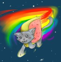 Nyan Cat to the Rescue X3 by deedledove