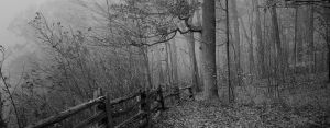 Somewhere Only WeKnow Panorama by chirilas
