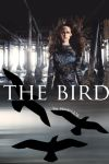The Bird Cover by iampeace