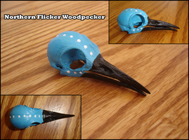 Painted Woodpecker Skull by Salisburies