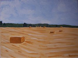 BALES NEAR CROOKEDWOOD II by wwwEAMONREILLYdotCOM