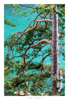 Turquoise by 5uRt