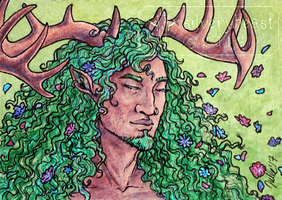 Prince Of Spring   ACEO by silverybeast