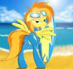 Spitfire wants you.....to surf her turf! by Spitshy