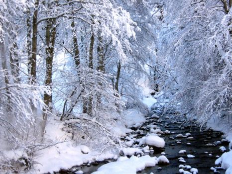Winter River by Amitolay