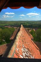 Roof, from the Tower by mariustipa