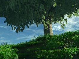 Tree on a hill - Summer by mariusp