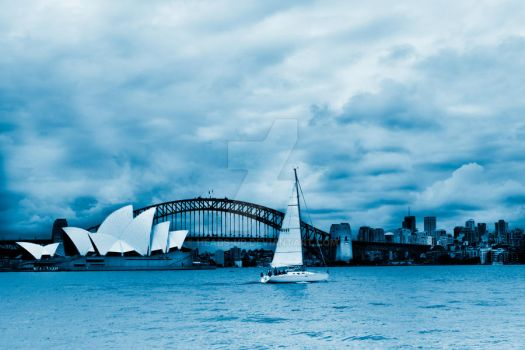 Sailing in Sydney by heads-up