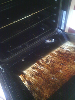 So... I burned my oven by 13Vampirella