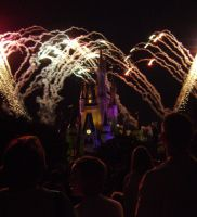 Cinderellas Castle at Night:12 by CanisCamera