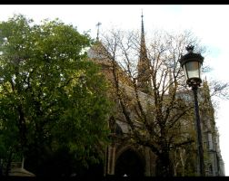 Notre-Dame, madame by Nunetts