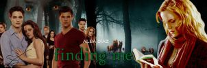 Banner 'Finding me' by desiredwings