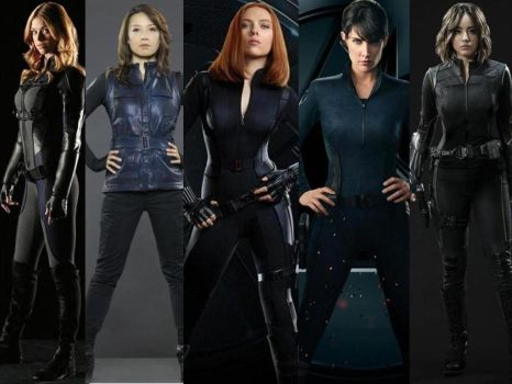 5 Agents Of S.H.I.E.L.D. by Shulkie