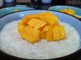 Coconut Rice Pudding by Icyfire101
