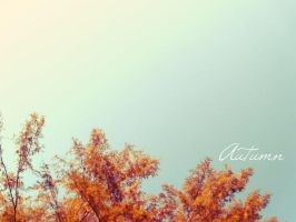 Autumn by TonsofPhotos