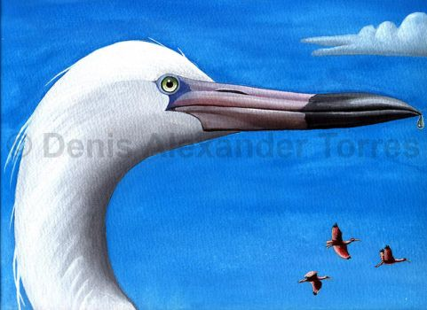 Egret and scarlet ibis by torreoso