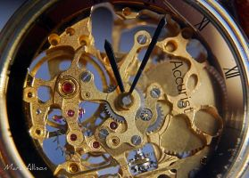 The mechanism of time by Mark-Allison