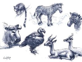 SD Zoo Sketchin Sep-09 1 by mighty5cent
