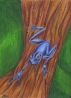 Tree frog by zelo75