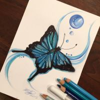 150- Blue Butterfly by Lucky978