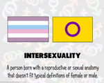 RAINBOW FLAGS: Intersex by Adcro