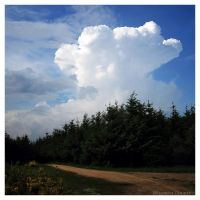 Thunderhead by FlorentCourty