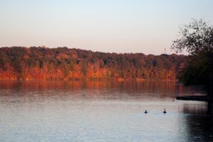 Fall sunset on the trees by WeaselTea