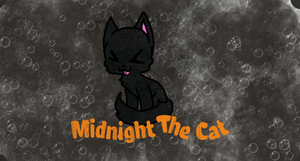 Midnight The Cat! by PerfectChaos10