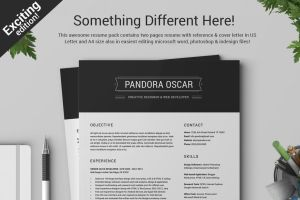 2 Pages Clean Resume CV - Pandora by SNIPESCIENTIST