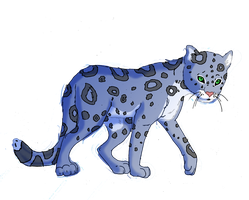 snow leopard by Midnightflaze