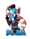 Sora Badge by PocketDemon