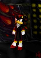 Shadow the hedgehog by NicoTheChan