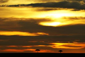 African Sunset by underdogg101