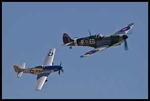 Planes of Fame 21 by AirshowDave