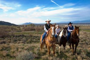 Magna Cowboys by redvideo
