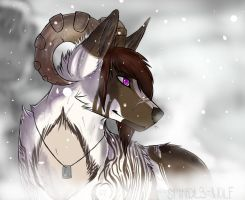 Blizzard by Spindl3-Wolf